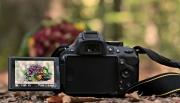 slr-camera-3752493_1920